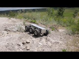 Wild Thumper 6WD Silver 75:1