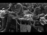 Война и мифы. III серия. Ополченцы и коллаборационисты. 7.05.2014.