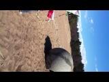 На финском заливе запускаем летучего змея с Лизкой и Полькой