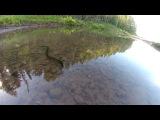 GeshBus Велотуризм Поездка#1 Кемерово - Анжеро-Судженск июнь 2014