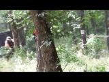 выезд в Александровский лес Азовского района