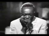 Big Mama Thornton John Lee Hooker Big Walter Horton &amp Dr Ross - Down Home Shakedown