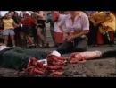 Беспредельный террор / Terror Firmer (1999) | public40911932