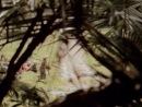 Пороги времени Следы во времени / Time Trax 2-й сезон, 14-я серия 1993-1994 фантастика, криминал