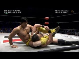 Kohei Sato (c) vs. Masakatsu Funaki, for ZERO1 World Heavyweight Title