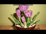 Трохи захоплення) под музыку Wendel Kos feat. Sarkis Edwards - Say goodbye. Picrolla