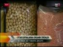 Gıda Mühendisi Organik Üretici Muharrem Doğan ile organik ürünler hakkında röportaj yapılıyor