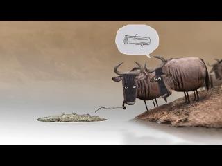 Смешной и глубоко философский мультфильм - Антилопа гну