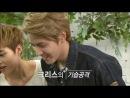 "[VIDEO] ""EXO's First Box"" DVD Disc 1 (ЧистоеNo Sub) [720]"