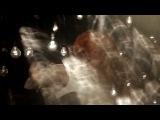 Zedd feat. Hayley Williams - Stay The Night (Doc-Terry Vs Nicky Romero Video Club Mix)