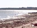 нудиский пляж в Таганроге.