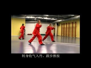 Taichi Neigong Wu Bu Quan, forma marcial (Er Lu) 太极五步拳 技击架