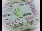 Minna no Nihongo II dai 41 ka
