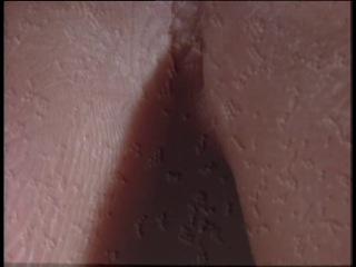 Атлас тела. Фильм 10. Защита и восстановление. fnkfc ntkf. abkmv 10. pfobnf b djccnfyjdktybt.