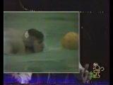 Джентльмен-шоу - Отдай мяч Лёне (РТВ, 17 мая 1991)
