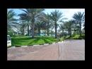 Dubai Palma