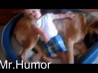 Самое_смешное_видео_про_детей_и_животных_2014!!Funny_kids_2014!Приколы2014!Прикольное_видео!