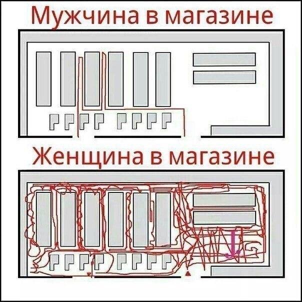 https://pp.vk.me/c543102/v543102274/262e/B5X8HbDtey0.jpg