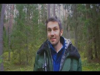 Дрищ в лесу