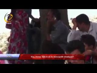 Köç, yoxsa, İŞİD-in əli ilə demoqrafik əməliyyat