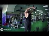 Как накачать плечи. Упражнения на дельтовидные мышцы