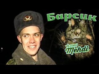 Кот барсик спасение