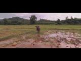 Koh Yao Noi - a film by Philip Bloom in 2.7K