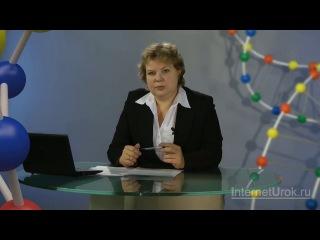 Биология. 9 класс. Урок 48. Этапы эволюции человека