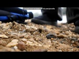 Повседневная жизнь под музыку Blue Suede - Hooked On A Feeling(OST