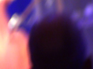 Екатеринбург 27.10.2014г концерт Светланы Сургановой