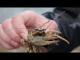 Рыбалка в Оренбуржье. Открытие зимнего сезона 2014-2015