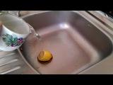 Lemon Fresh Ice Bucket Challenge