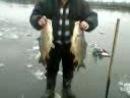 Рыбалка в Лененских водоемах(Киселевка)