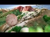 Мясокомбинат ВЕЛКОМ. Рекламный ролик Колбаса Домашнего Копчения