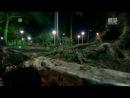 Неизведанные города Манаус 4 2014 Animal Planet