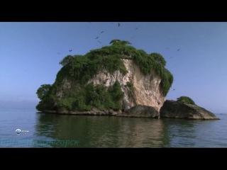 «Зелёный рай - Доминиканская Республика. Карибское сокровище» (Документальный, 2008)
