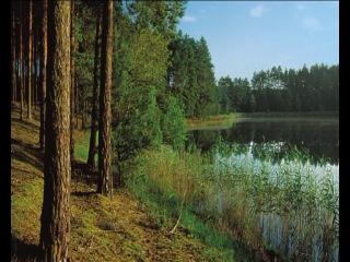 музыка к фильму Польские дороги Богдан Курылевич Polskie drogi B. Kurylewicz