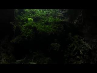 Пещера Шондонг   самая крупная и красивая пещера в мире