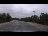 По дороге Ура-Губа Видяево в Мурманск, Кольский р-н, 12.07.2014г.