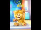 маленький котик смеется