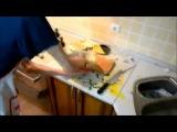 Как приготовить омлет (Стас Оксаний)