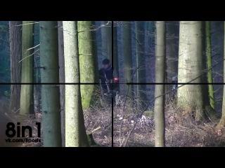 Оптический прицел на страйкбольное оружие / Airsoft sniper - scope cam - ASCSB Koop ASCW FFA