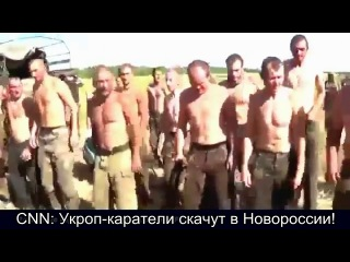 Украинский батальон Донбасс.