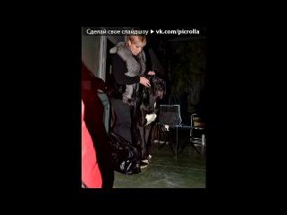 «альбом для видео» под музыку Натали - О, Б-же, какой мужчина. Picrolla