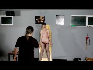 Paintoy - Hazel