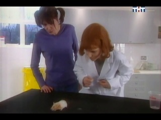 Женские шалости (эпизод)