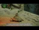 Покатай меня, большая черепаха))))