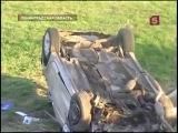 В ДТП под Лугой погибли 8 человек