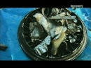 133 S11E03 (Карандаши, Утилизация металла, Кофе (2 части))