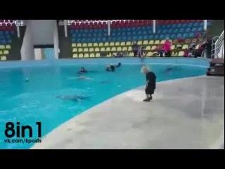 Дельфин играет в мяч с маленьким мальчиком / Dolphin playing with kid!